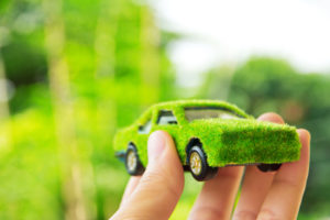 Grassy car in hand
